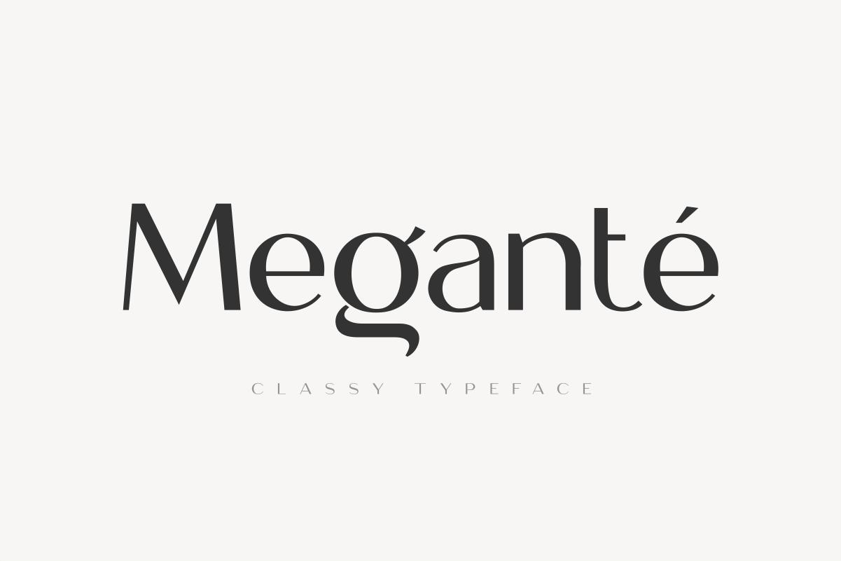 21 1 Megante Classy Elegant Font