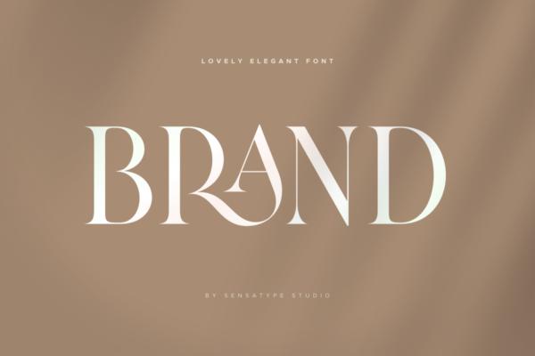21 Brand Lovely Elegant Font 14