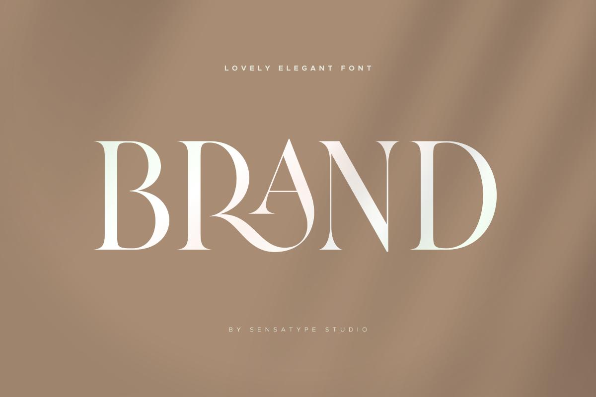 Brand - Lovely Elegant Font in Serif Fonts