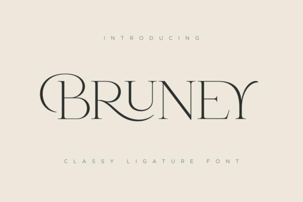 21 Bruney Classy Ligature Font 19