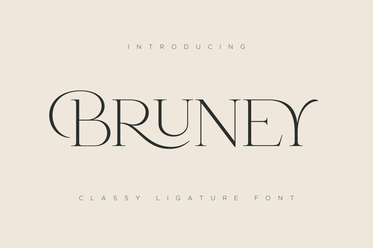 Bruney - Classy Ligature Font in Display Fonts