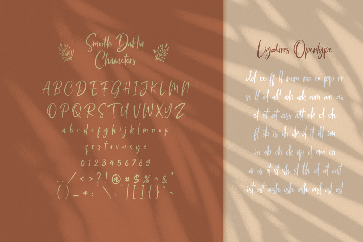 Smooth Dahlia in Brush Fonts