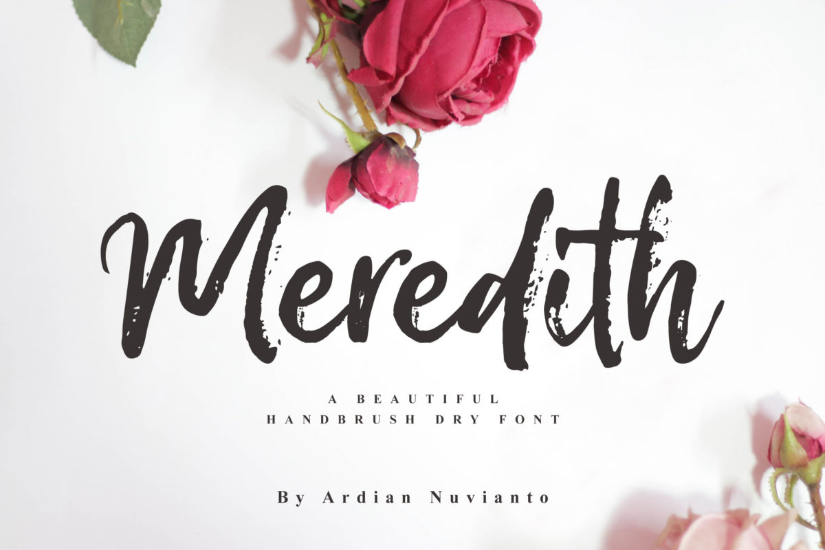 Meredith in Brush Fonts