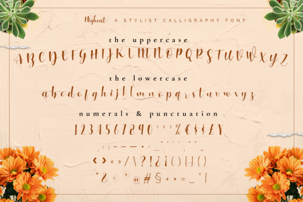 Higheat - Stylish Calligraphy in Calligraphy Fonts