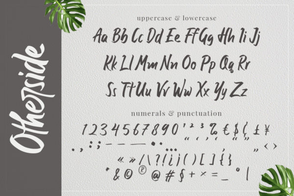 Otherside - Handwriting Font in Brush Fonts