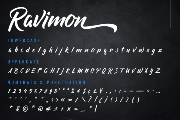 Ravimon - Solid Handbrush Font in Brush Fonts
