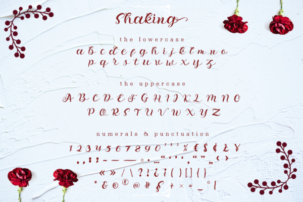 Shaking - Organic Calligraphy in Calligraphy Fonts