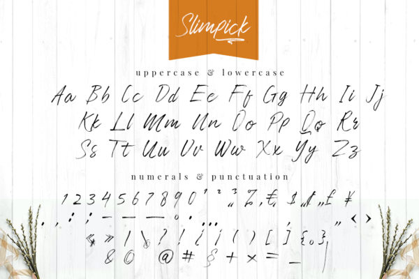 Slimpick - Brush Font with Swash in Brush Fonts