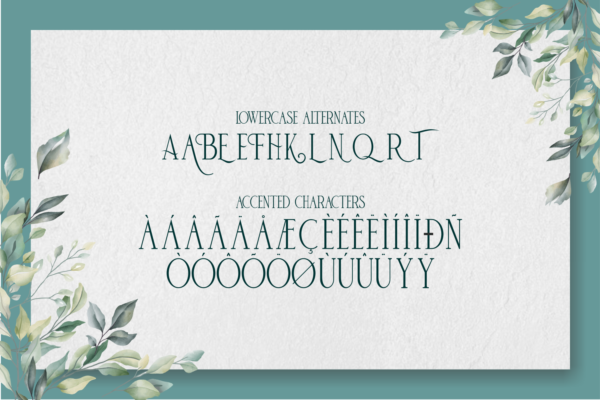 deBambeet in Serif Fonts