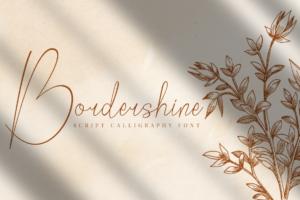 Bordershine Script in Script Fonts