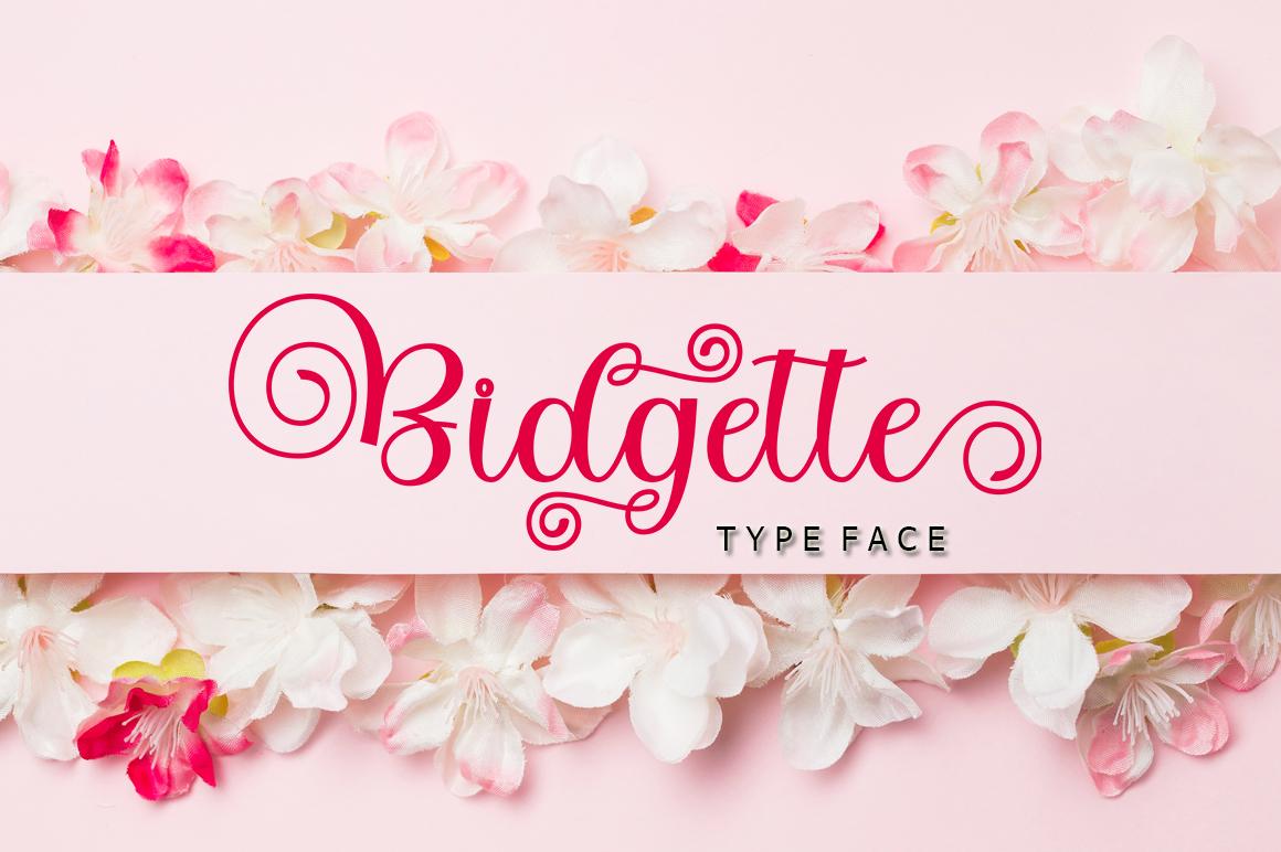 Bidgette in Script Fonts