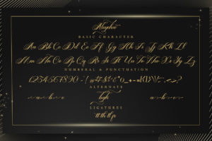 Aleycha in Calligraphy Fonts