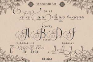 Belgia - Modern Calligraphy in Calligraphy Fonts