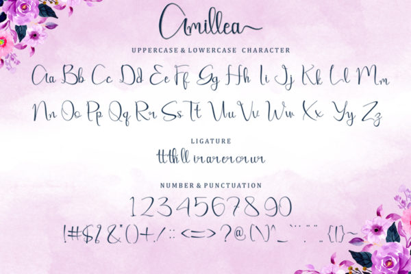 Amillea in Calligraphy Fonts