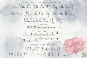 Mirandany in Calligraphy Fonts
