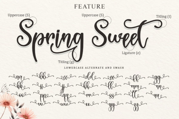 Spring Sweet in Calligraphy Fonts
