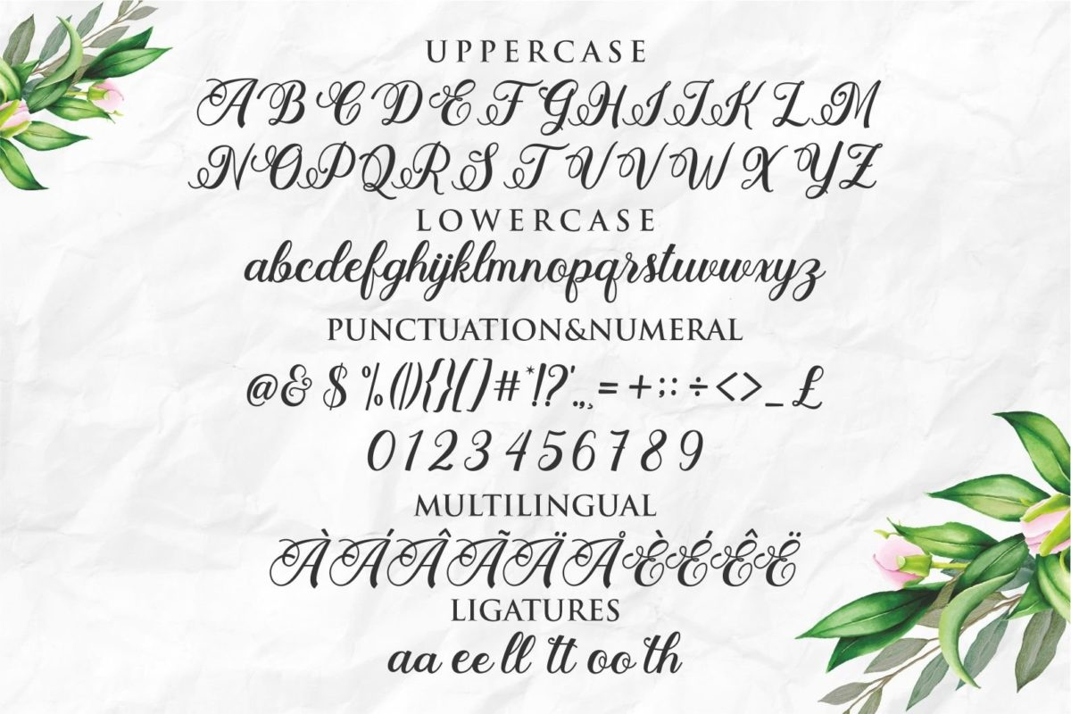 Stayola in Decorative Fonts