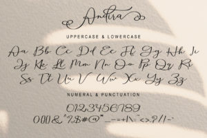 Andira in Calligraphy Fonts