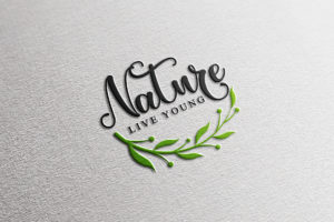 The Spring in Calligraphy Fonts