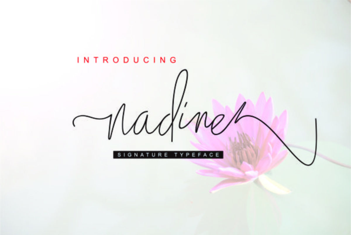 nadine in Calligraphy Fonts