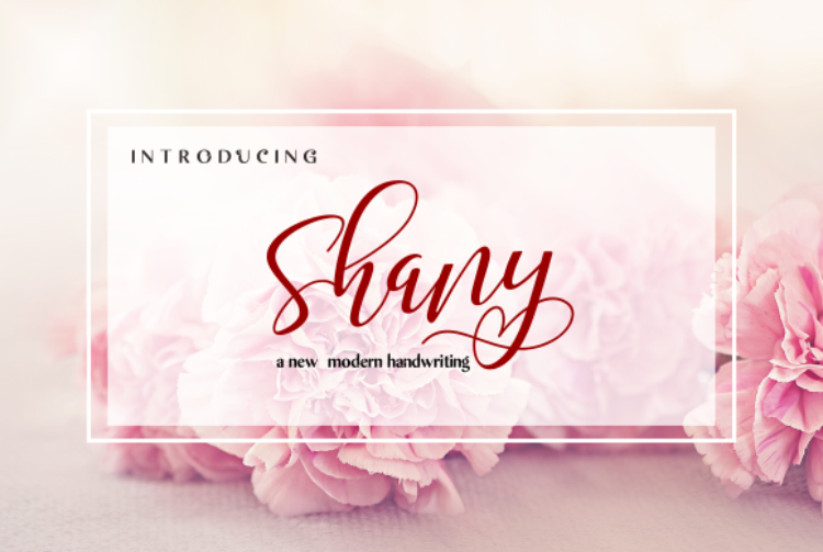 Shany in Calligraphy Fonts