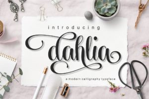 dahlia in Calligraphy Fonts