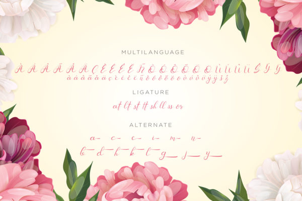 Senoritta - Modern Calligraphy Font in Calligraphy Fonts
