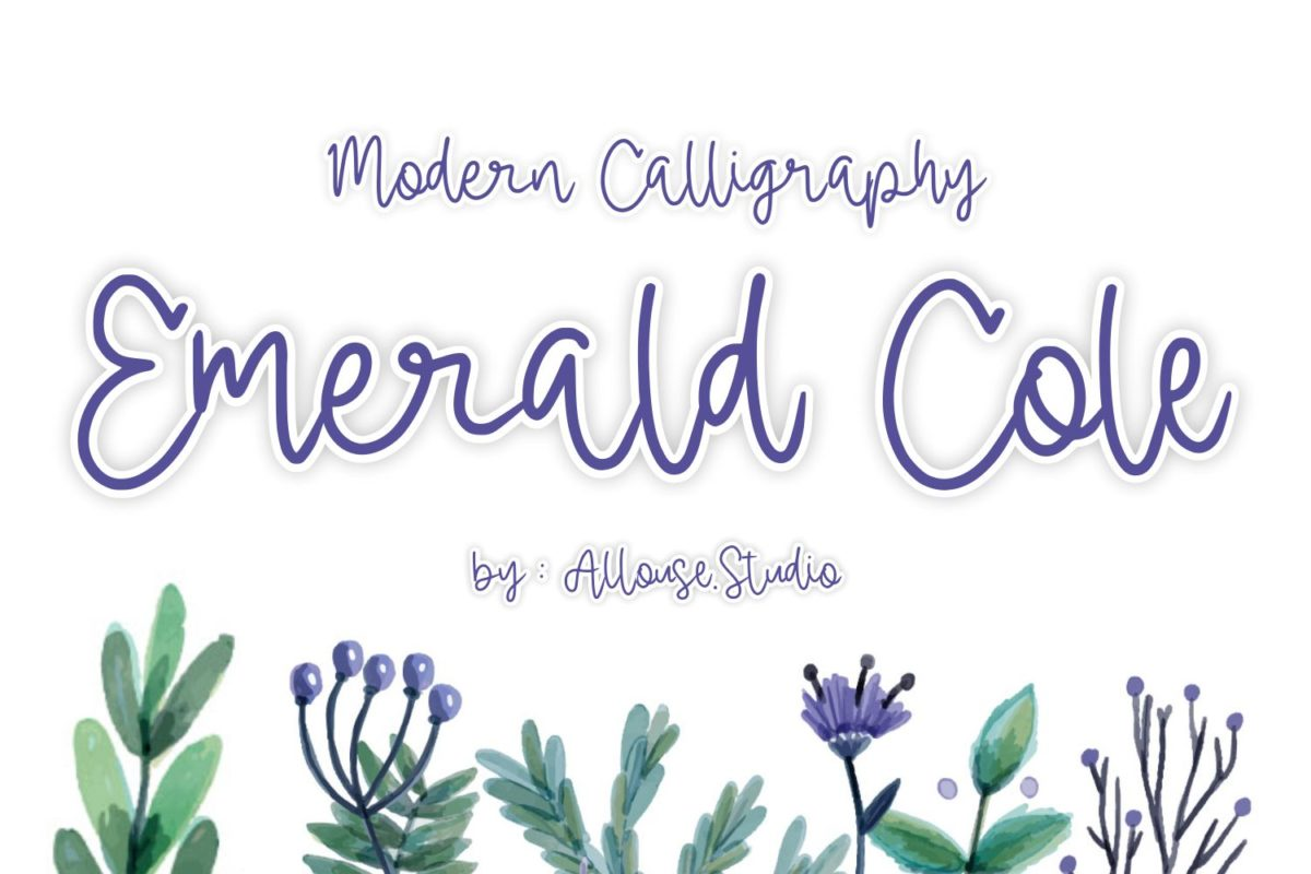 Emerald Cole - Modern Calligraphy Font in Calligraphy Fonts