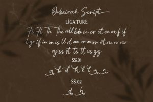 Owbeirak Collection - Font Duo (Serif & Script) in Display Fonts