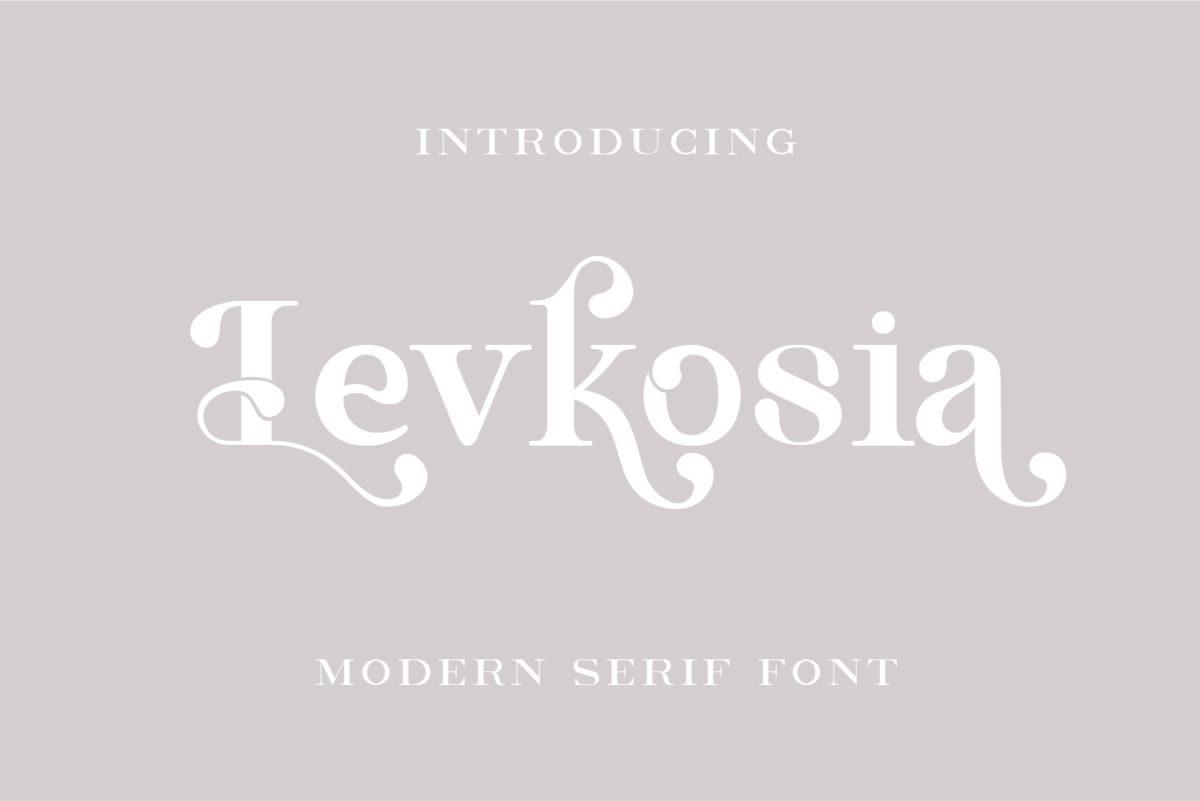 Levkosia - Modern Serif Font in Serif Fonts