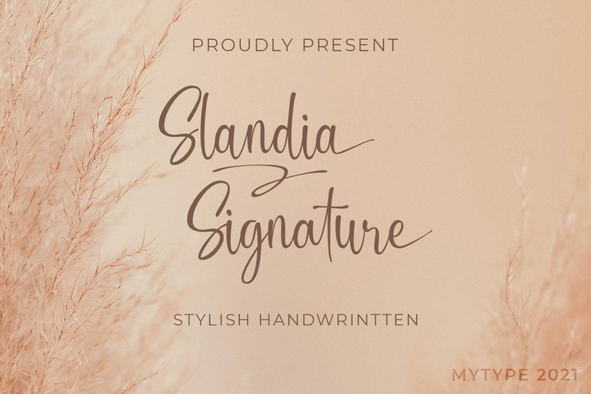 Slandia Signature - Handwritten Font in Script Fonts