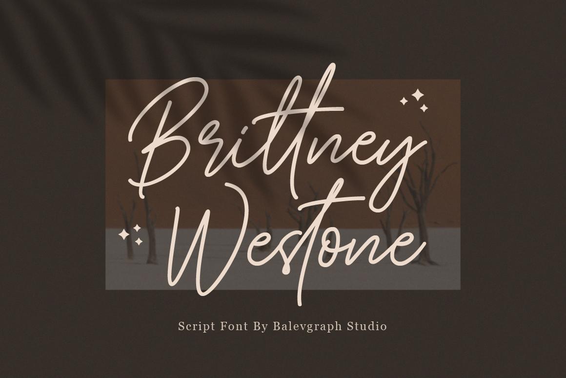 Brittney Westone - Handwritten Script Font in Handwriting Fonts