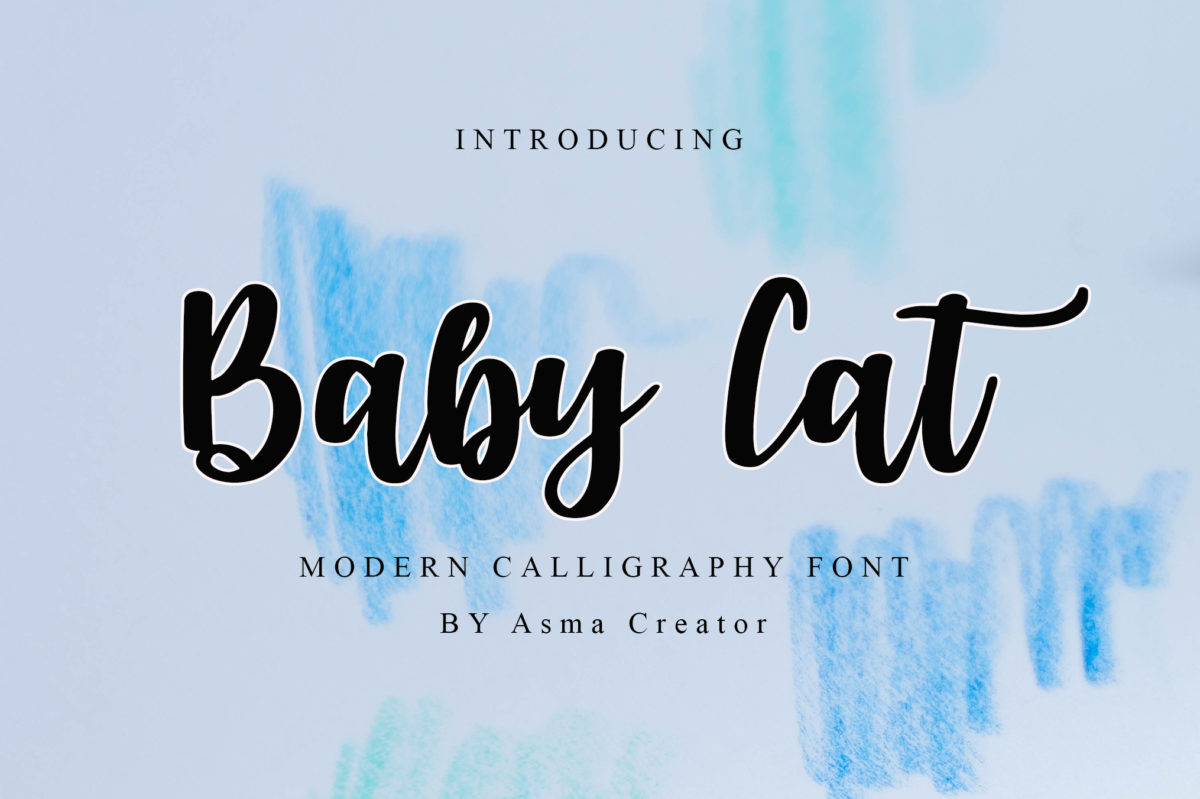 Baby Cat in Calligraphy Fonts