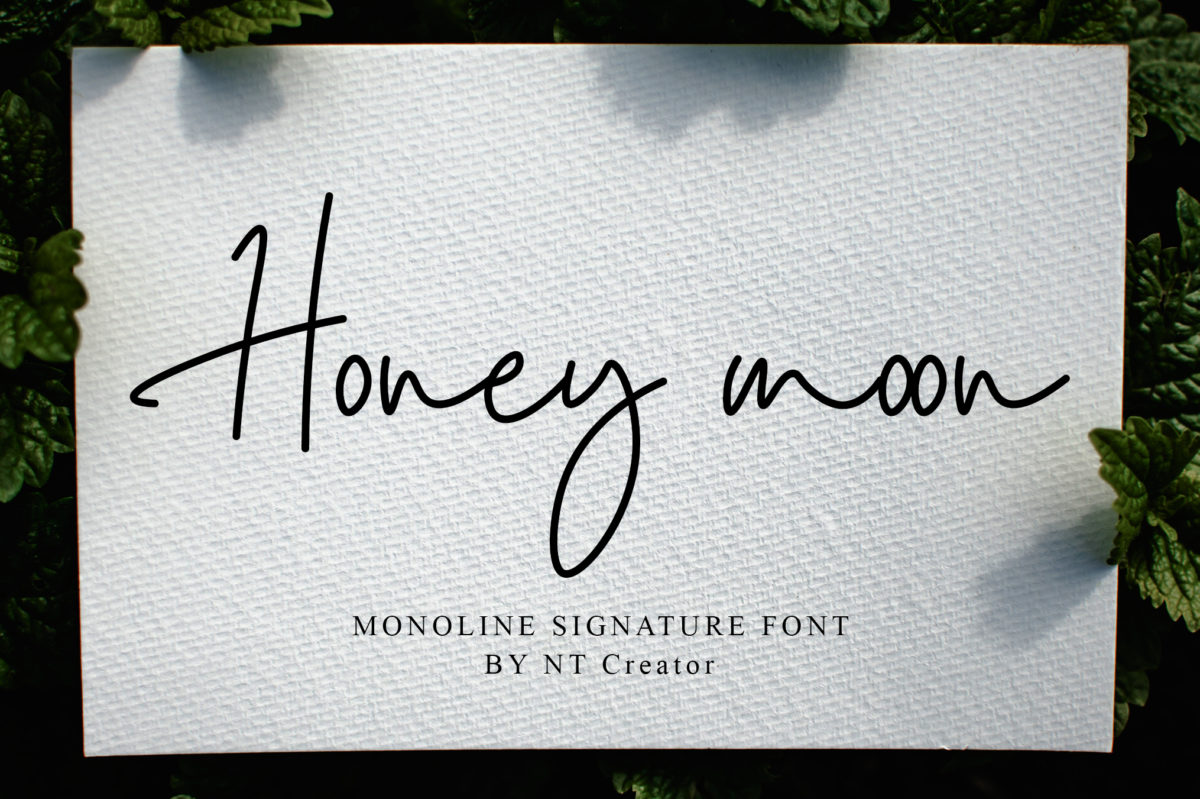 Honey Moon in Script Fonts