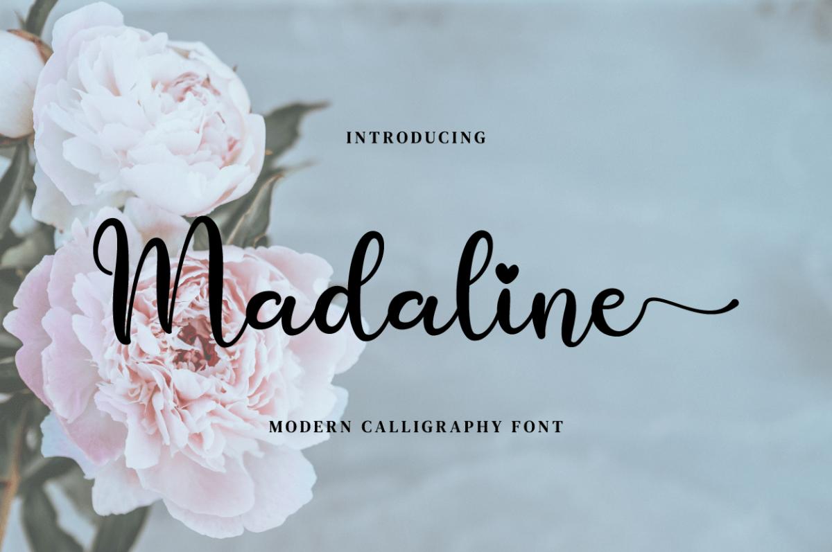 Madaline in Script Fonts