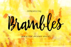 Brambles in Script Fonts