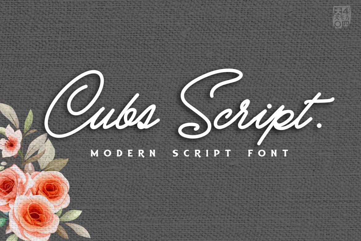 Cubs Script in Handwriting Fonts