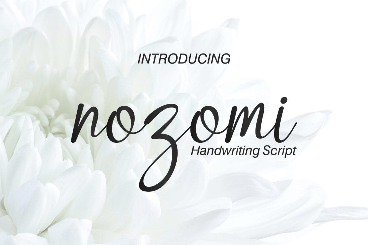 Nozomi - Handwriting Script Font in Script Fonts