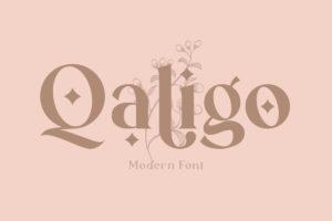 Qaligo - Elegant Serif Font in Display Fonts