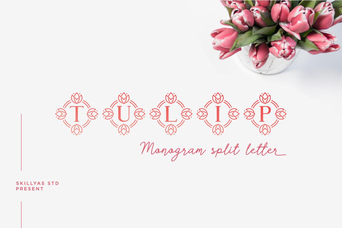 Tulip Monogram Font in Decorative Fonts
