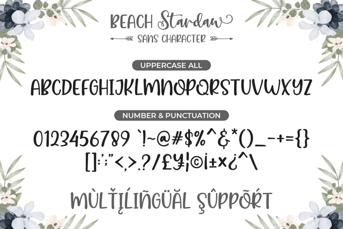 Beach Stardaw - A Font Duo With Extras in Handwriting Fonts